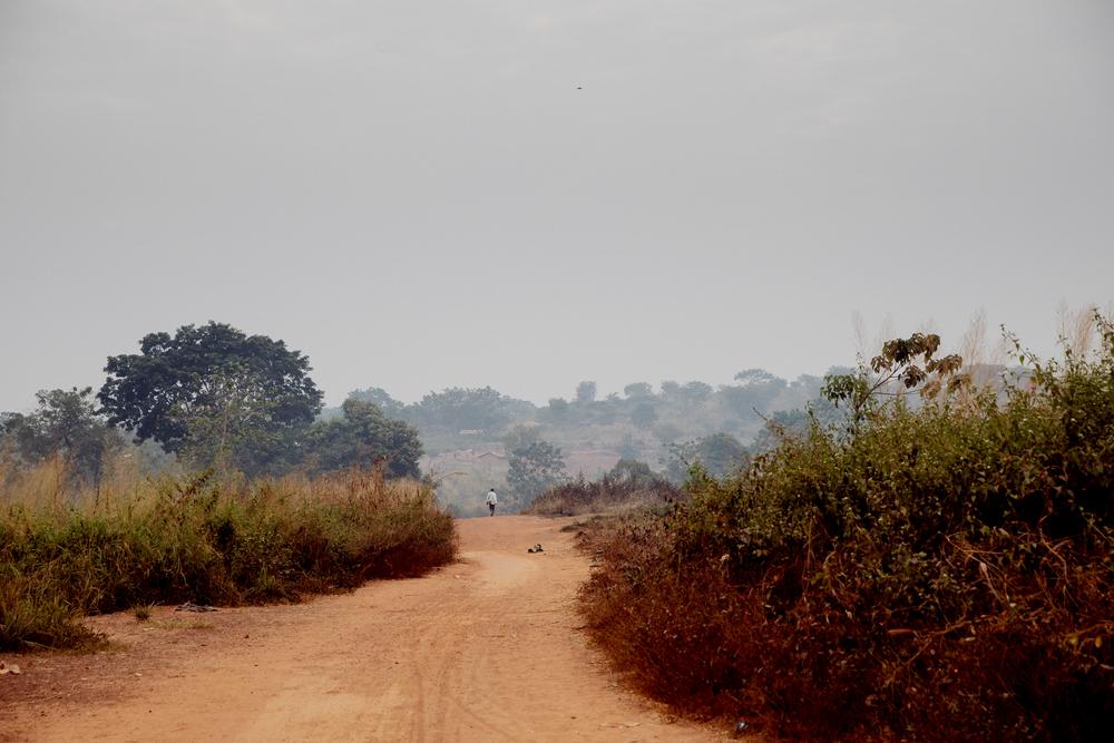República Centro-Africana: MSF denuncia o assassinato de vários civis, incluindo um membro da organização