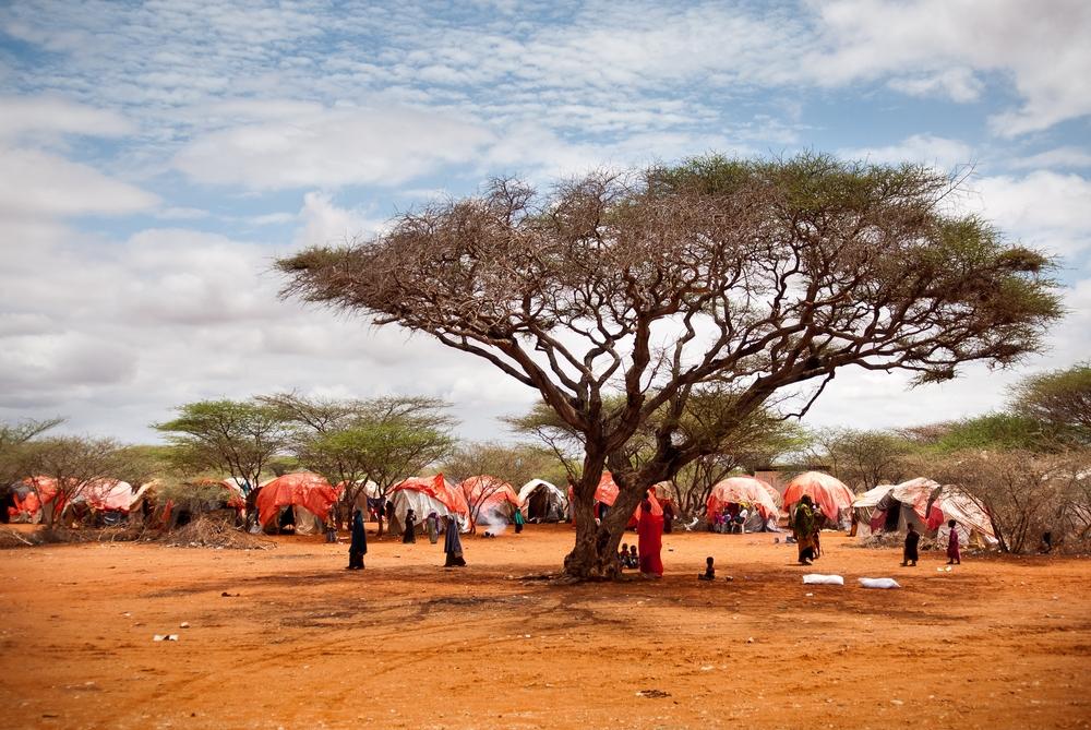 MSF planeja regressar à Somália em abril