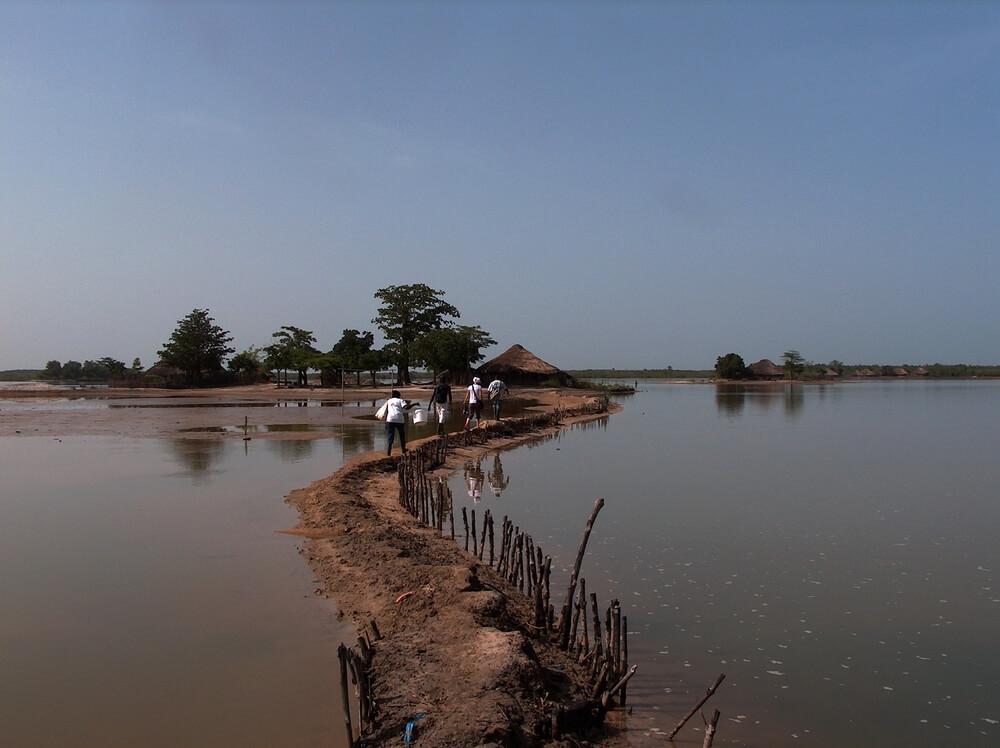 Minha experiência em Serra Leoa e Guiné-Bissau