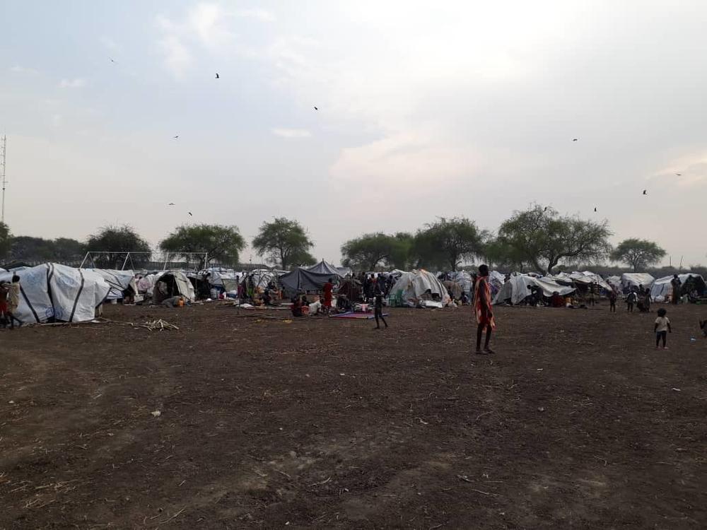 Milhares fogem para a mata enquanto o conflito se intensifica