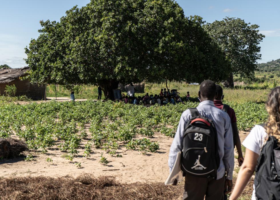 Cabo Delgado: Montepuez