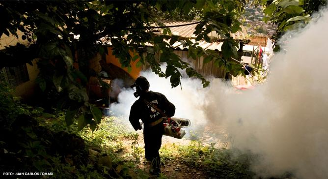 A dengue é uma febre viral transmitida pelo mosquito Aedes aegypti. Médicos Sem Fronteiras já ajudou a controlar surtos da doença no Brasil e atendeu pacientes na Unidade de Pronto Atendimento do Complexo do Alemão.