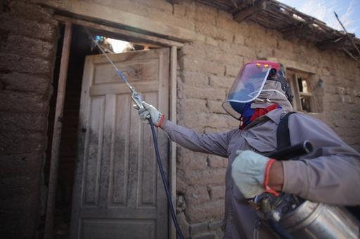 Controle vetorial do inseto barbeiro: atividade é apoiada por MSF em Narciso Campero, na Bolívia (Foto: Juan Renau / MSF)