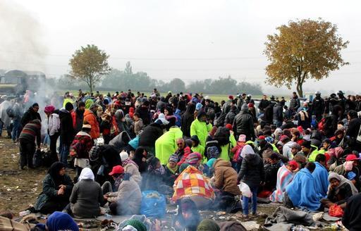Milhares de pessoas em trânsito estão enfrentando graves necessidades na Eslovênia (Foto: Hanna Spegel/MSF)