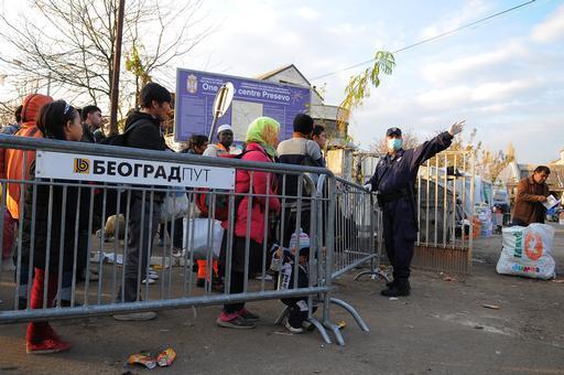 Refugiados chegando à Sérvia pela fronteira com a Macedônia (Foto: Florian Lems/MSF)