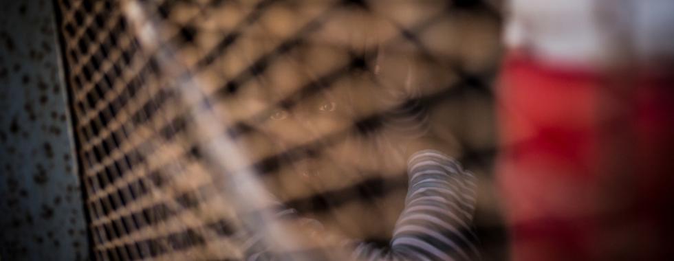 Líbia: tiroteio em centro de detenção em Trípoli deixa um morto e dois feridos
