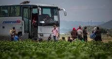Refugiados são retirados de Idomeni sem saber para onde vão