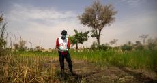 Combatendo a malária por meio do tratamento de água em comunidades no Níger