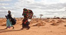Saúde planetária: 3 contextos humanitários que podem ser agravados por mudanças climáticas e ambientais