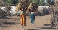 Darfur: o sonho de voltar para casa continua distante no acampamento de Sortoni