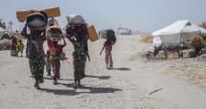 Borno, Nigéria: movimentos populacionais e deslocamentos forçados