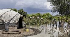 500 mil pessoas são deslocadas por enchentes na região de Grande Pibor, no Sudão do Sul