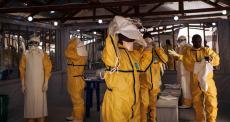 MSF suspende atividades médicas após ataque a Centro de Tratamento de Ebola na RDC