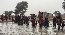 Milhares que fogem de Rann, na Nigéria, buscam assistência em Camarões