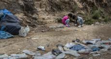 MSF alerta para uma catástrofe se COVID-19 atingir campos de refugiados na Grécia