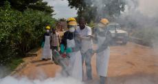 Febre amarela: vigilância e capacidade de resposta rápida podem evitar surto repentino e potencialmente perigoso da doença