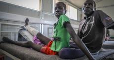 MSF apoia a aguardada estratégia da OMS de combate a mortes e lesões por picada de cobra