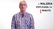 A Malária explicada em 1 minuto